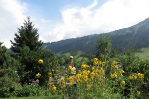 Gute-Laune-Gartenkunst